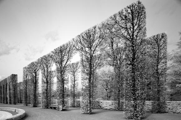 Castle Garden Schwetzingen, Germany