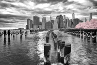 New York City in Infrared